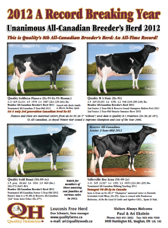 One Of A Kind - Quality Goldwyn Flansco